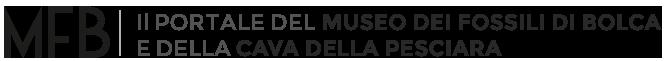 Il Portale del Museo dei fossili di Bolca e della Cava della Pesciara